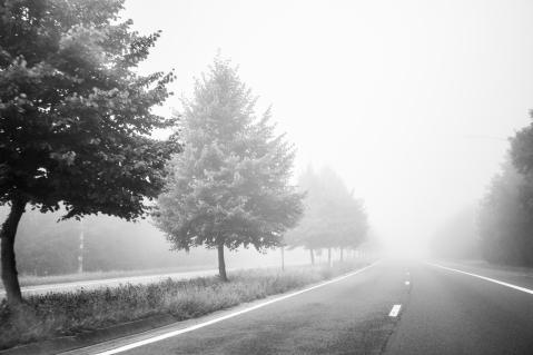 fog004